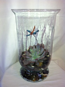 Large hurricane glass vase planted with an exotic succulent and of course a dragonfly for only 49.95